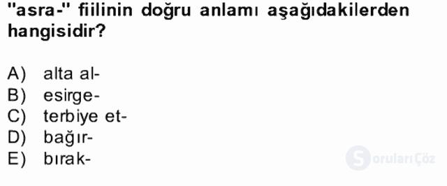 Uygur Türkçesi Bahar Final 21. Soru