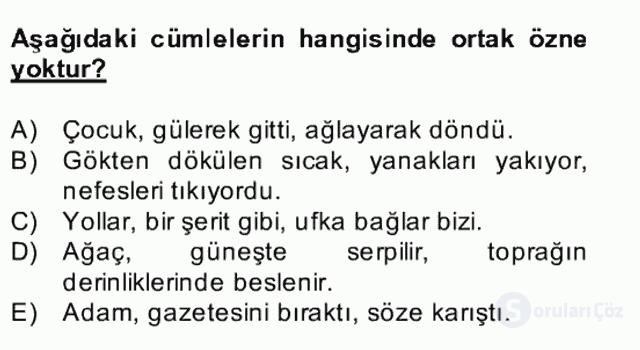 Türkçe Cümle Bilgisi II Bahar Final 1. Soru