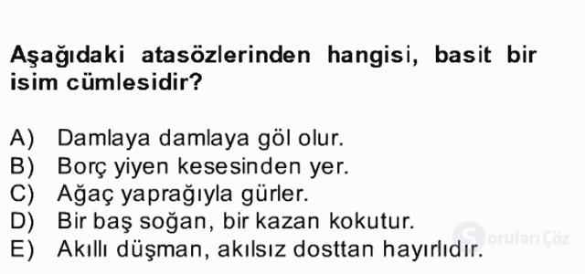 Türkçe Cümle Bilgisi II Bahar Final 17. Soru