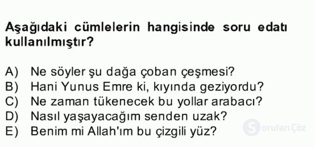 Türkçe Cümle Bilgisi II Bahar Final 21. Soru