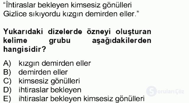 Türkçe Cümle Bilgisi II Bahar Final 22. Soru