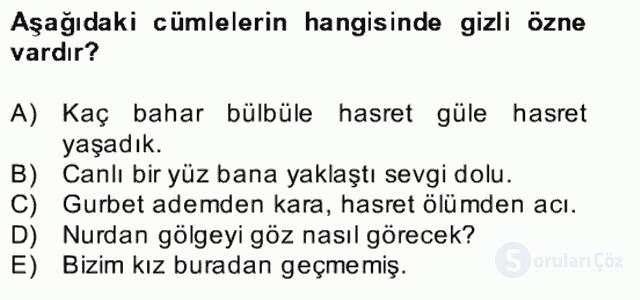 Türkçe Cümle Bilgisi II Bahar Final 6. Soru