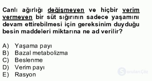 Hayvan Besleme Bahar Final 23. Soru