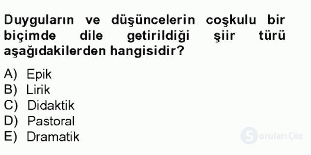 Türkçe Yazılı Anlatım Bahar Final 5. Soru