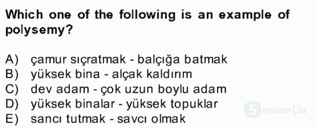 Türkçe Tümce Bilgisi ve Anlambilim Bahar Final 30. Soru