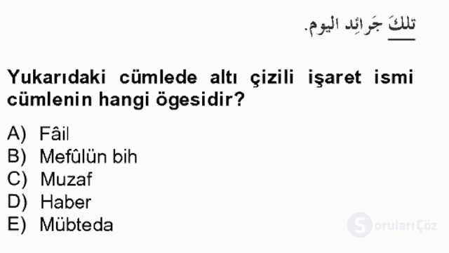 Arapça II Bahar Final 10. Soru