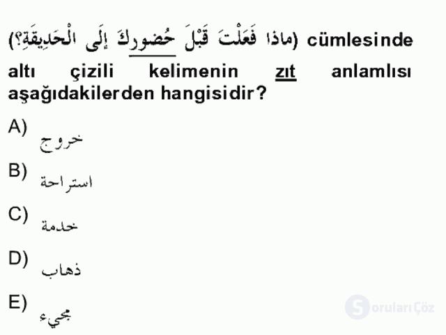 Arapça II Bahar Final 2. Soru