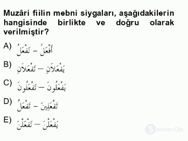 Arapça II Bahar Final 3. Soru