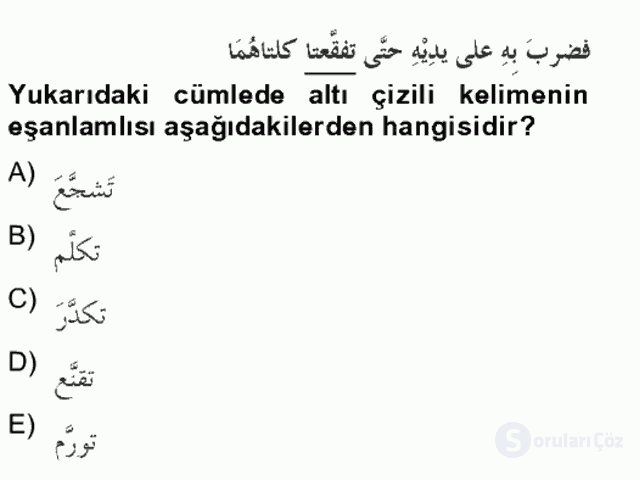 Arapça IV Bahar Final 11. Soru