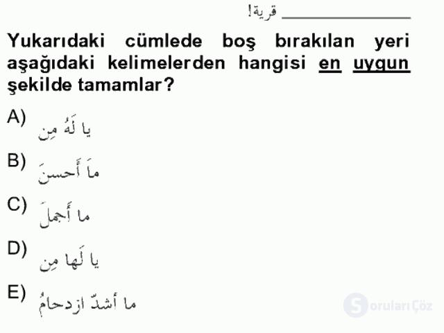 Arapça IV Bahar Final 17. Soru