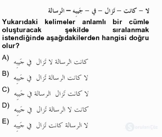 Arapça IV Bahar Final 19. Soru