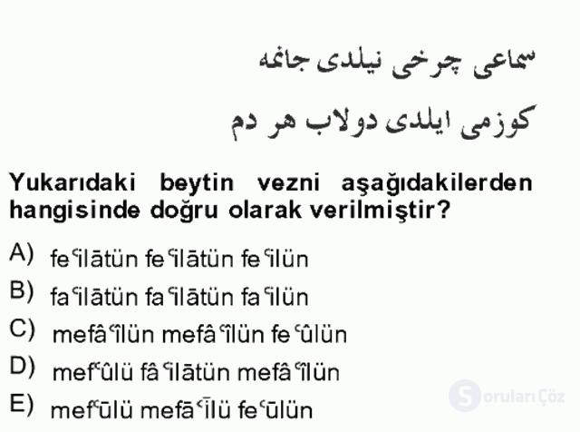 XIV-XV. Yüzyıllar Türk Edebiyatı Bahar Final 10. Soru