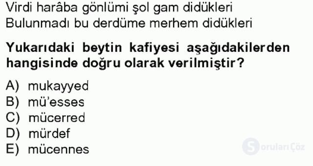 XIV-XV. Yüzyıllar Türk Edebiyatı Bahar Final 1. Soru