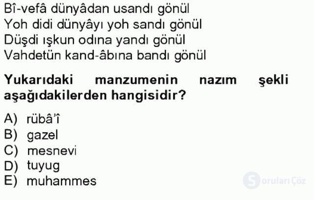XIV-XV. Yüzyıllar Türk Edebiyatı Bahar Final 7. Soru