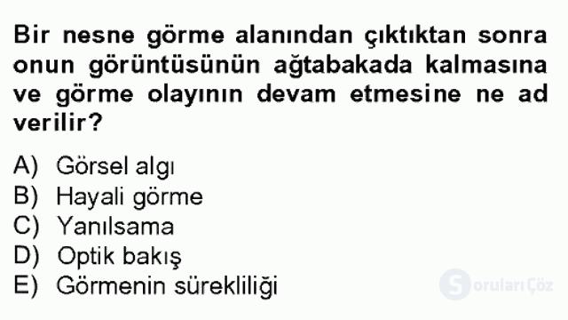 Görsel Kültür Bahar Dönemi Final Final 6. Soru