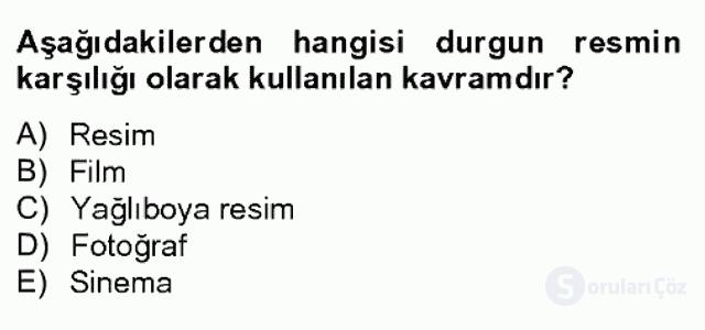Görsel Kültür Bahar Dönemi Final Final 9. Soru
