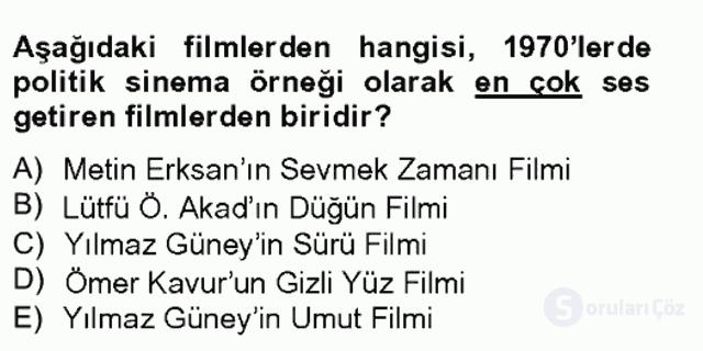 Film ve Video Kültürü Bahar Final 3. Soru