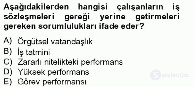 Performans Yönetimi Bahar Final 2. Soru