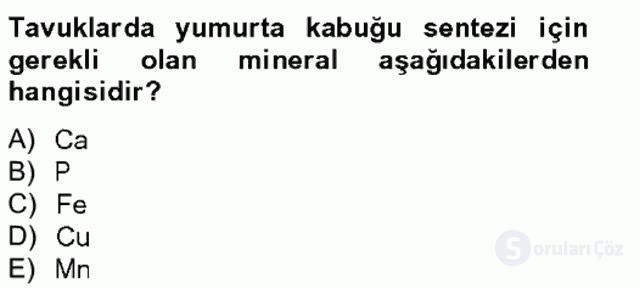 Temel Veteriner Biyokimya Bahar Final 10. Soru
