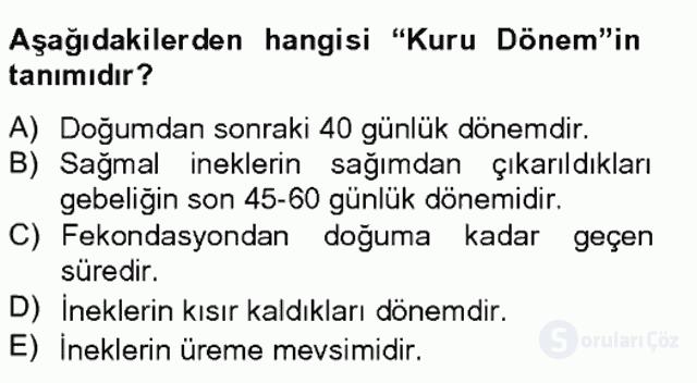 Doğum Bilgisi ve Sun'i Tohumlama Bahar Final 16. Soru