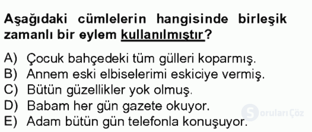 Türkçe Biçim Bilgisi Bahar Final 11. Soru