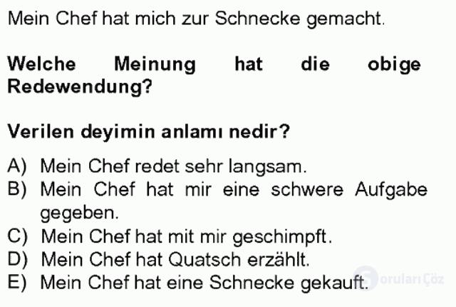 Almanca II Tek Ders 11. Soru