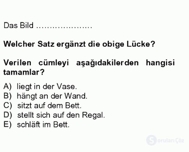 Almanca II Tek Ders 2. Soru